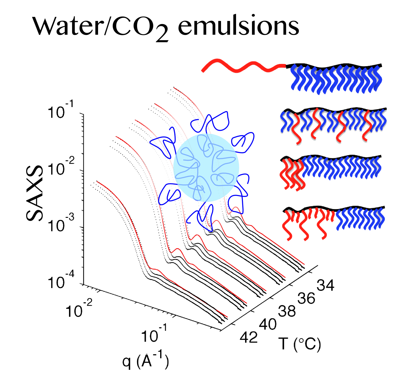 synchrotron saxs in supercritical co2